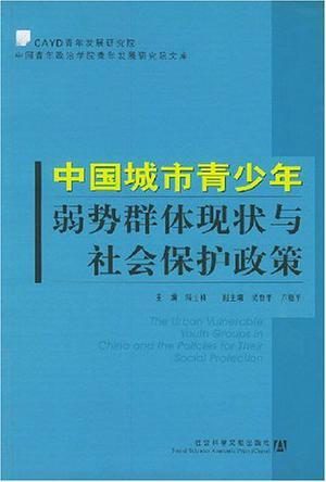 中国城市青少年弱势群体现状与社会保护政策