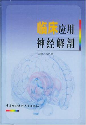 临床应用神经解剖