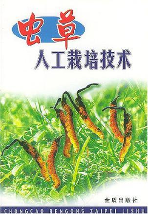 虫草人工栽培技术