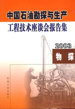 中国石油勘探与生产工程技术座谈会报告集