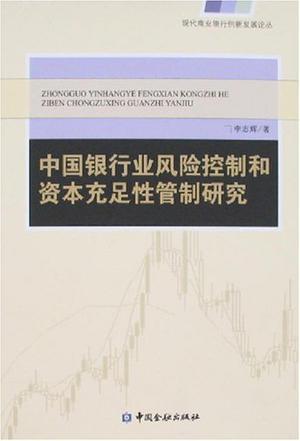 中国银行业风险控制和资本充足性管制研究
