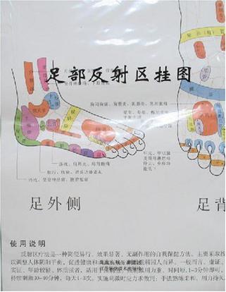 足部反射区挂图