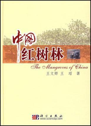 中国红树林