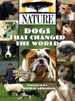 改变世界的犬类
