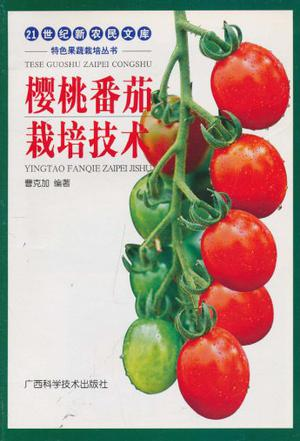 樱桃番茄栽培技术