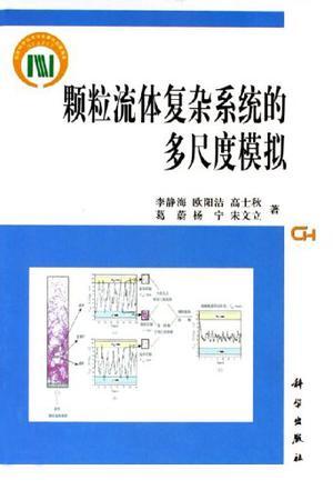 颗粒流体复杂系统的多尺度模拟