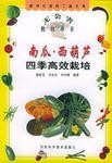 南瓜、西葫芦四季高效栽培