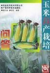 玉米高产栽培问答