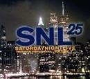 Saturday Night Live - 25 Years Of Musical Performances - Volume 1