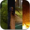 TRAUMA (iPhone / iPad)