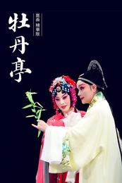 牡丹亭(精华版) 的封面图片