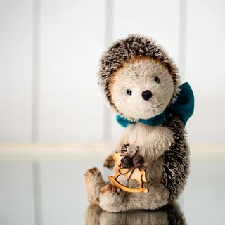 Artist Teddy bear/ hedgehog Darvin 19cm tall