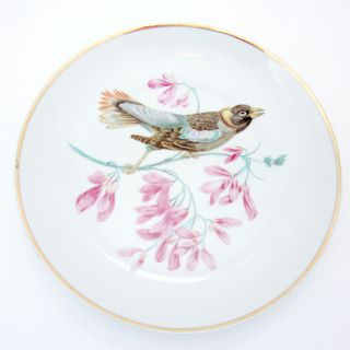 Vintage Exotic Bird Collector Plate Vintage Royal Halsey China Decorative Porcelain Plate Gift Idea For Bird Lover Shabby Chic Home Decor的图片