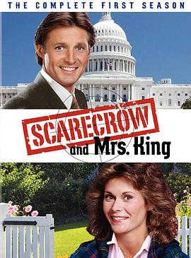 侠骨柔情 第一季 Scarecrow and Mrs. King Season 1
