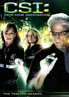 犯罪现场调查 第十二季 CSI: Crime Scene Investigation Season 12