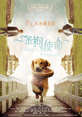一条狗的使命 A Dog's Purpose