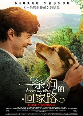 一条狗的回家路 A Dog's Way Home