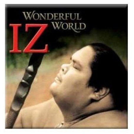 Israel Iz Kamakawiwo'ole - Wonderful World