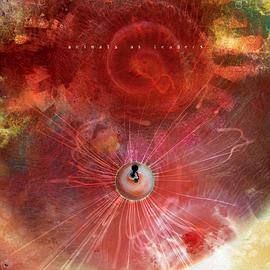 Animals As Leaders - The Joy Of Motion