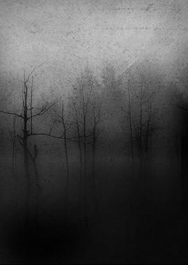 Dark Fount... - A Sapless Leave Withering In The Night Fog