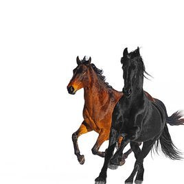 Lil Nas X... - Old Town Road (Remix)