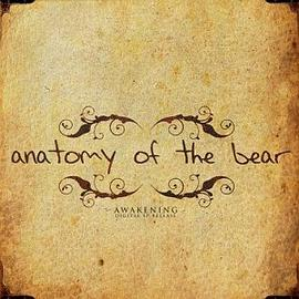 Anatomy of The Bear - Awakening